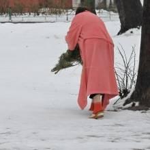 Тариф на свинство, або Як жінка ялинку викидала
