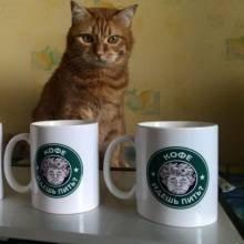 Вирок за дві пачки кави з «АТБ»