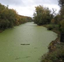 Чекають на проведення екологічних слухань, аби почати розчищення річки Стрижень