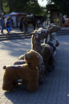 Рынок 7-ой километр теперь и в Бердянске