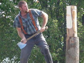 Как в Чернигове деревья рубают